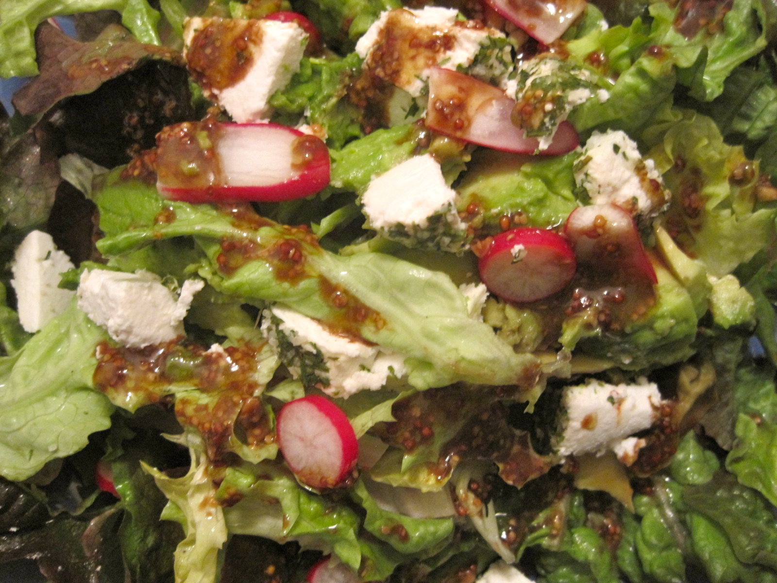 Salad with avocado, radish, and farm fresh goat cheese covered in ...
