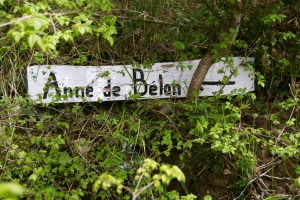 The last leg of the oyster pilgrimage: Anne de Belon