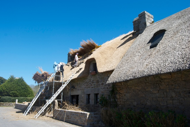 Thatched Roof under repair